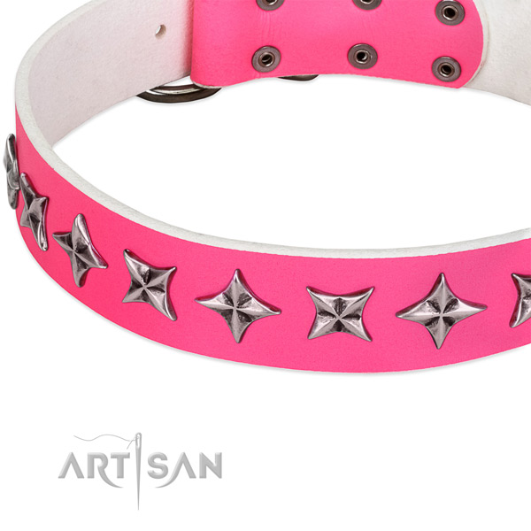 Everyday walking embellished dog collar of fine quality genuine leather