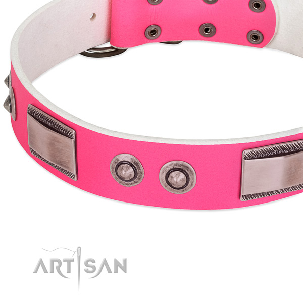 Easy wearing full grain leather collar with embellishments for your dog