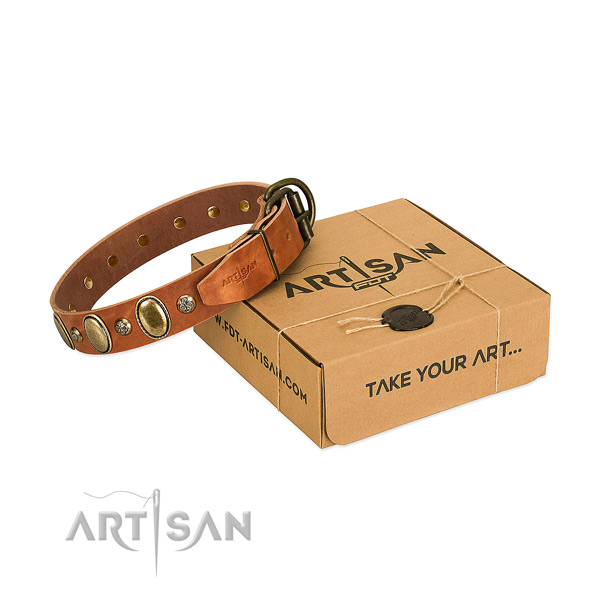Adjustable full grain leather dog collar with reliable D-ring