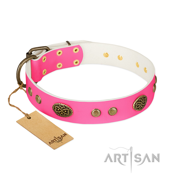 Rust resistant decorations on full grain leather dog collar for your doggie