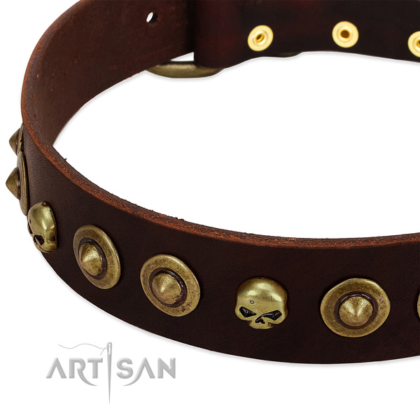 Stylish design embellishments on genuine leather collar for your doggie