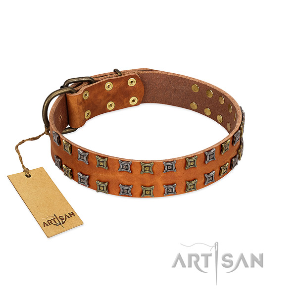 Best quality full grain genuine leather dog collar with adornments for your canine