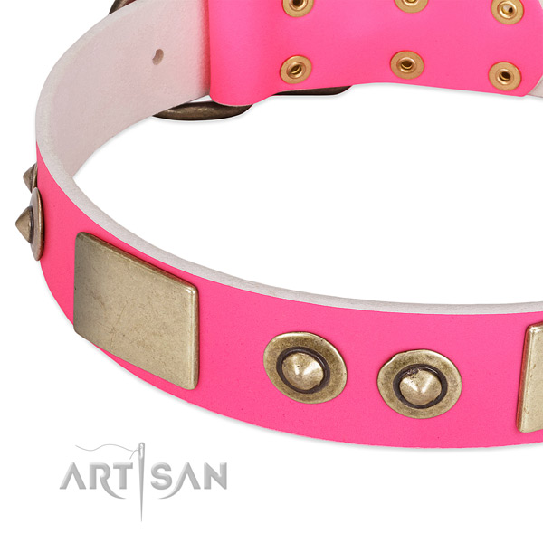 Reliable embellishments on genuine leather dog collar for your dog
