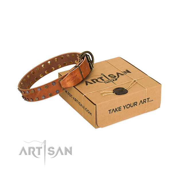 Everyday use soft to touch full grain natural leather dog collar with embellishments