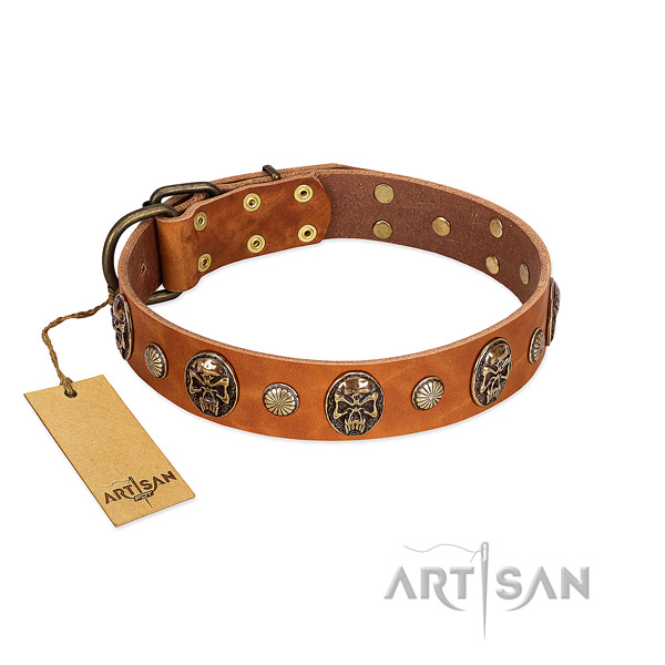 Stylish genuine leather dog collar for stylish walking