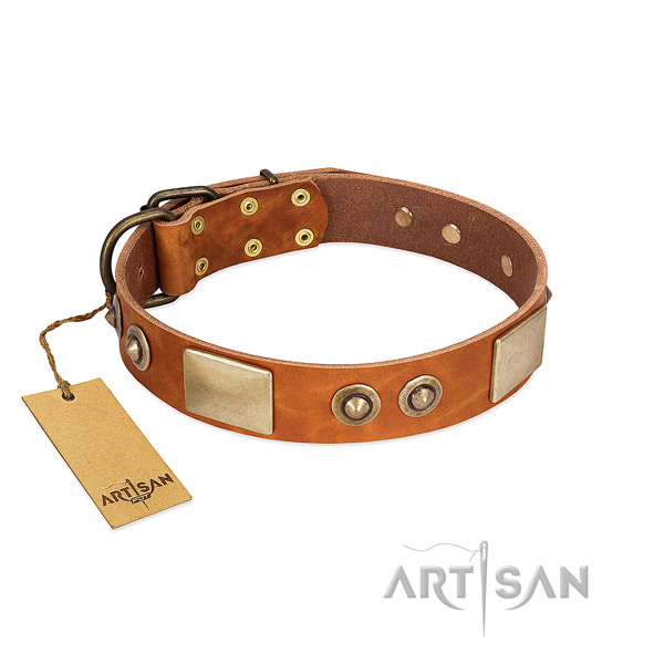 Adjustable genuine leather dog collar for basic training your doggie