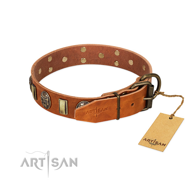 Full grain leather dog collar with durable hardware and embellishments