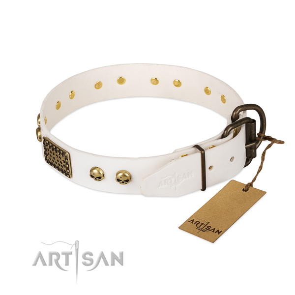 Adjustable full grain leather dog collar for everyday walking your doggie