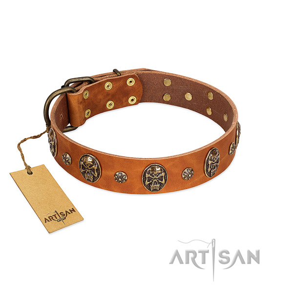 Top notch full grain genuine leather collar for your four-legged friend