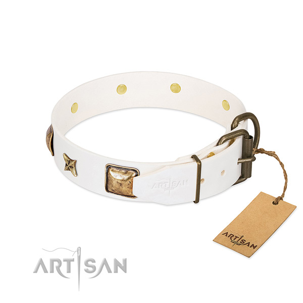 Leather dog collar with rust-proof fittings and decorations