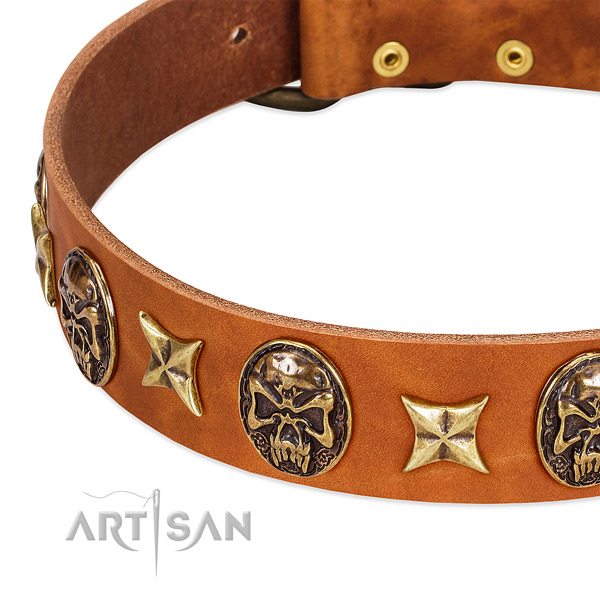 Rust-proof adornments on genuine leather dog collar for your four-legged friend