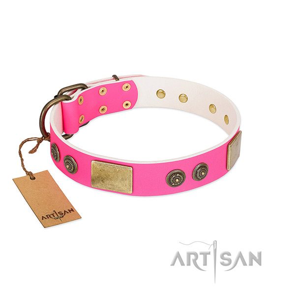 Significant genuine leather dog collar for comfortable wearing