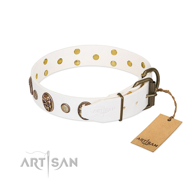 Rust resistant hardware on full grain leather collar for stylish walking your doggie