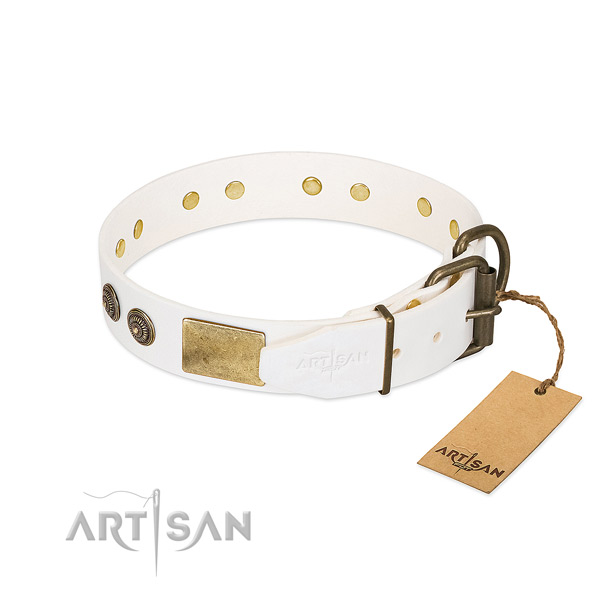 Strong traditional buckle on full grain leather collar for fancy walking your doggie