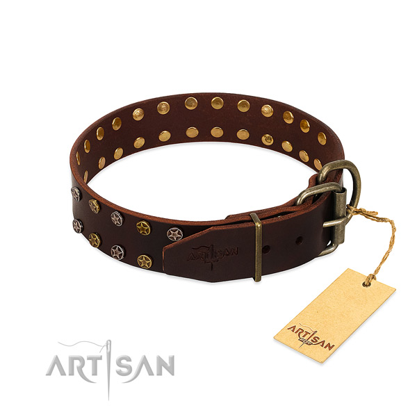 Daily walking full grain leather dog collar with trendy adornments