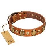"""Crystal Sand"" FDT Artisan Tan Leather Great Dane Collar with Vintage Looking Oval and Round Studs"