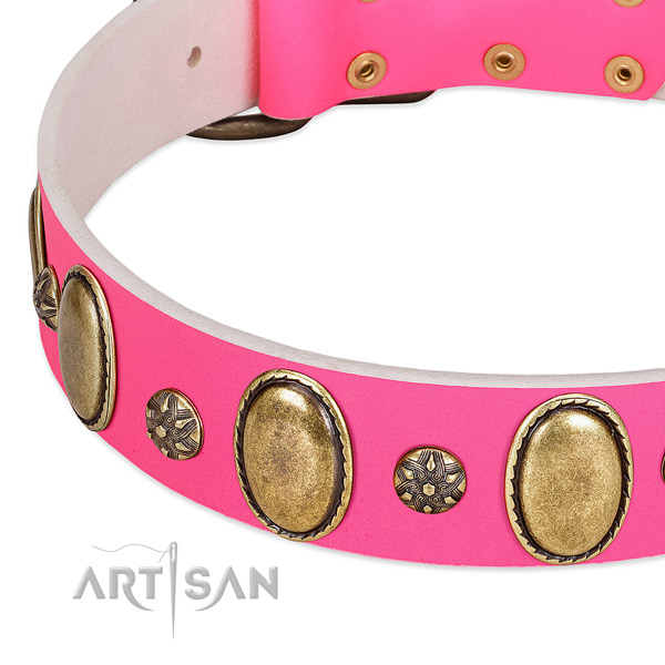 Daily use flexible leather dog collar with embellishments