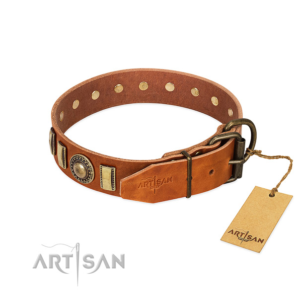 Impressive genuine leather dog collar with rust-proof fittings