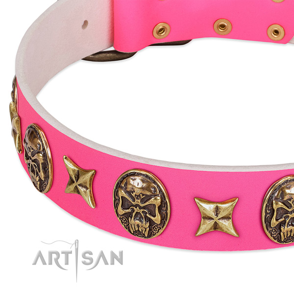 Leather dog collar with stylish design embellishments