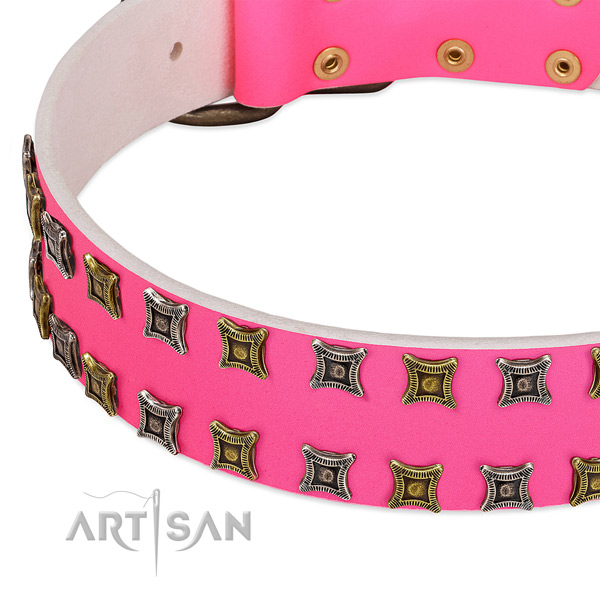 Leather dog collar with studs for your lovely canine