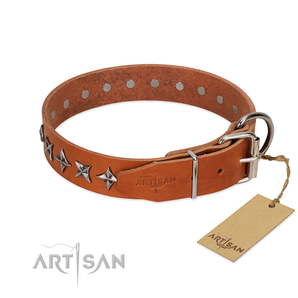 Walking adorned dog collar of top quality natural leather