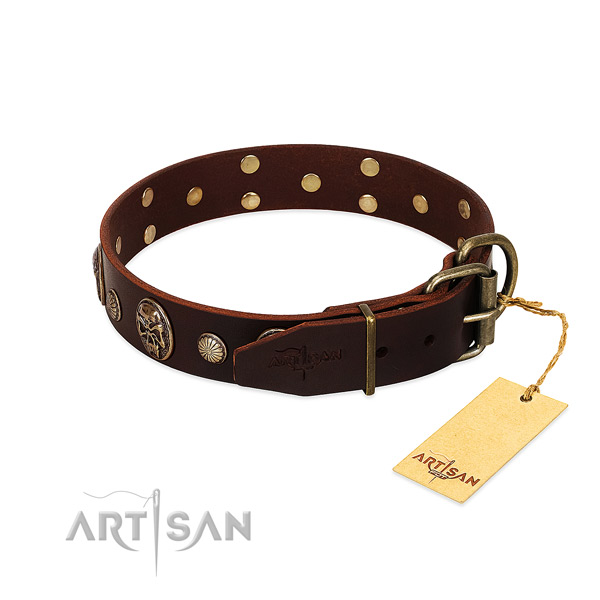 Corrosion resistant adornments on stylish walking dog collar