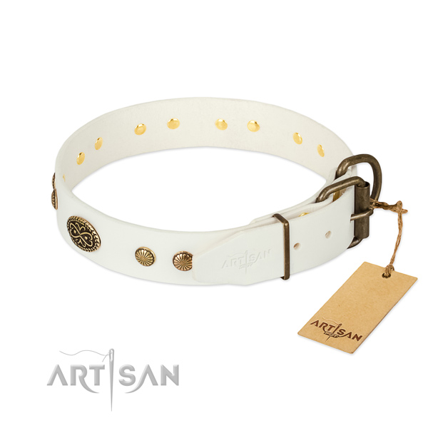 Reliable embellishments on natural leather dog collar for your doggie