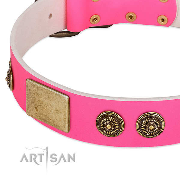 Inimitable dog collar crafted for your stylish pet