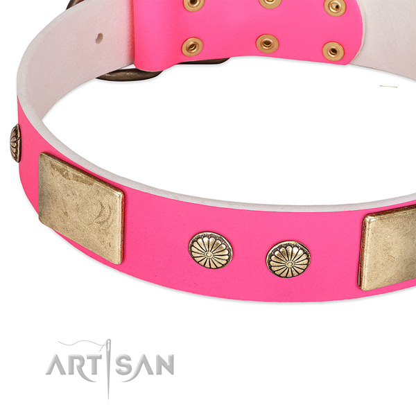 Corrosion proof D-ring on natural leather dog collar for your doggie