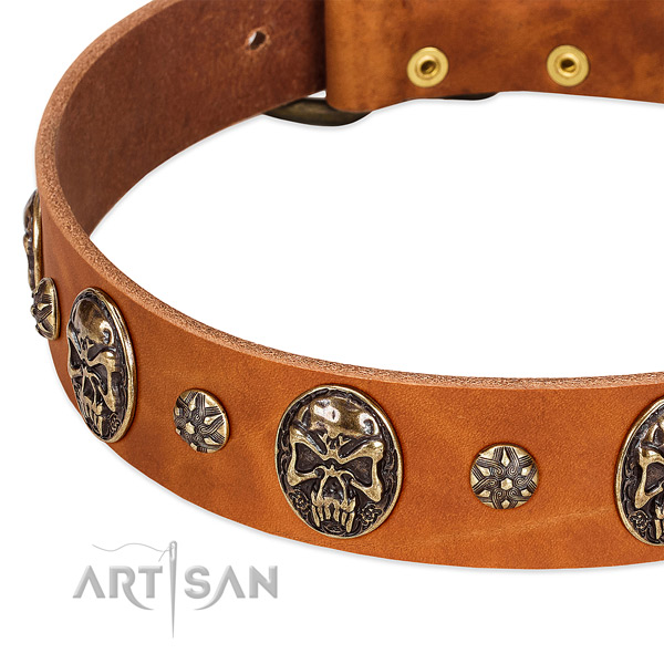 Corrosion proof fittings on natural genuine leather dog collar for your dog