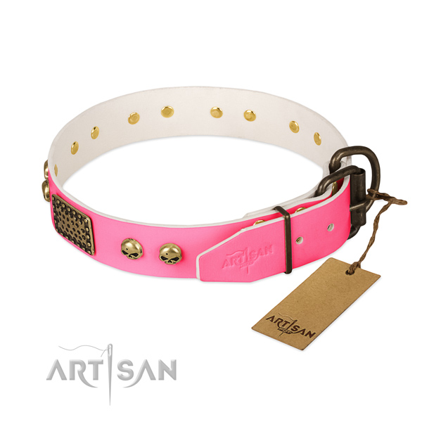 Reliable buckle on walking dog collar