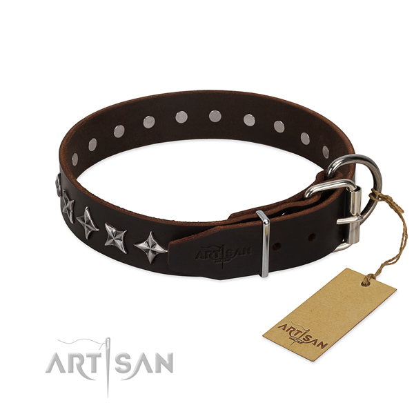 Daily use decorated dog collar of top quality natural leather