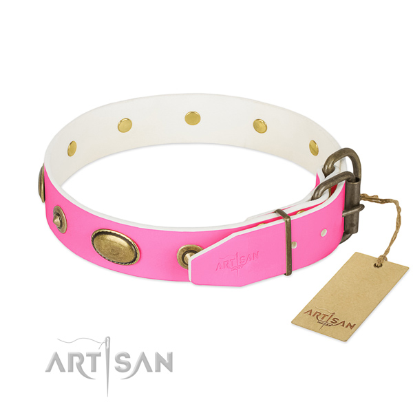 Strong traditional buckle on leather dog collar for your canine