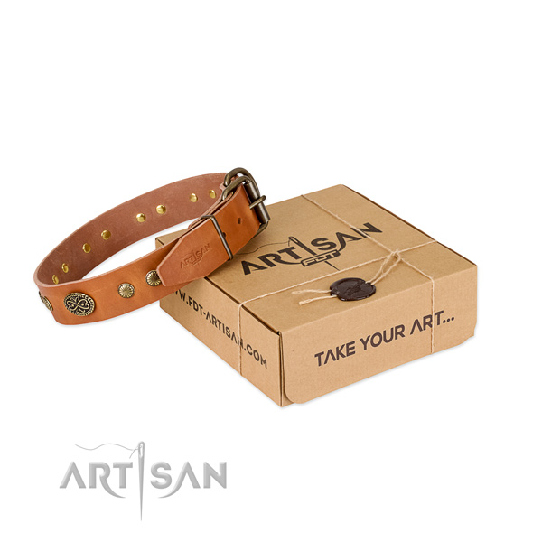 Rust-proof fittings on leather dog collar for your four-legged friend