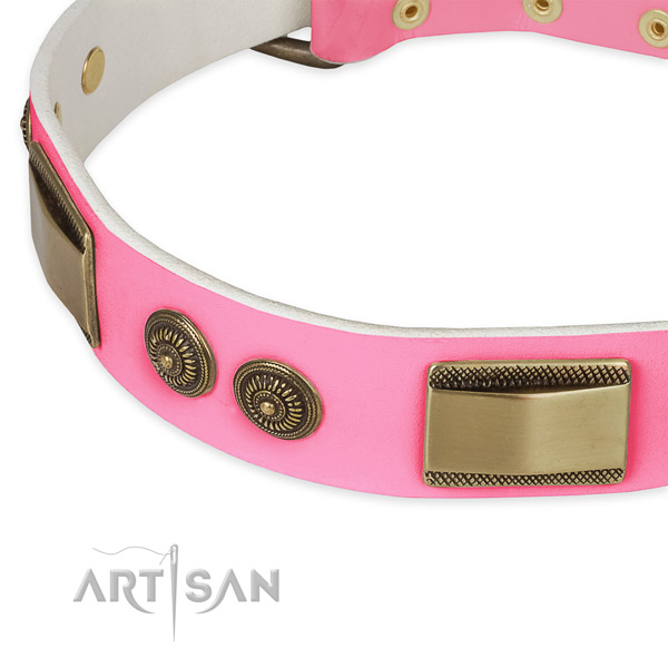 Genuine leather dog collar with embellishments for stylish walking