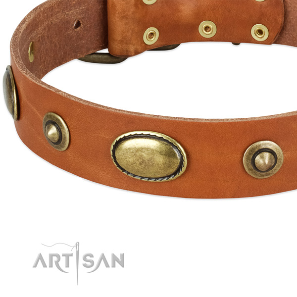 Strong adornments on genuine leather dog collar for your pet