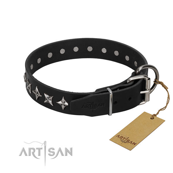 Everyday use adorned dog collar of top quality full grain genuine leather