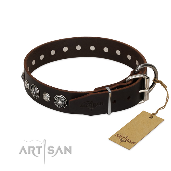 Durable full grain leather dog collar with incredible decorations