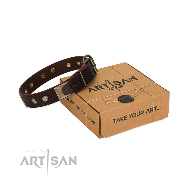Rust resistant traditional buckle on dog collar for daily use