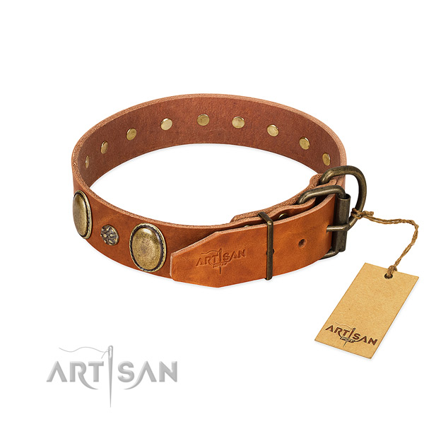Everyday walking top rate leather dog collar