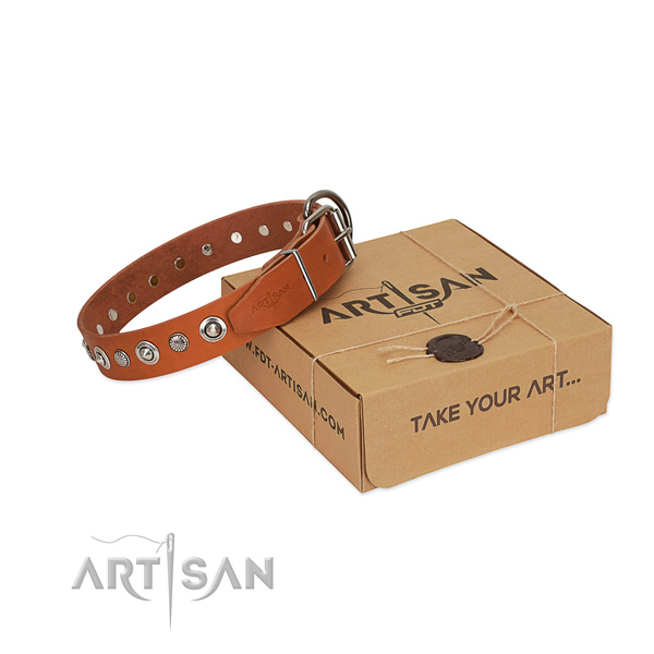 Best quality full grain natural leather dog collar with amazing adornments