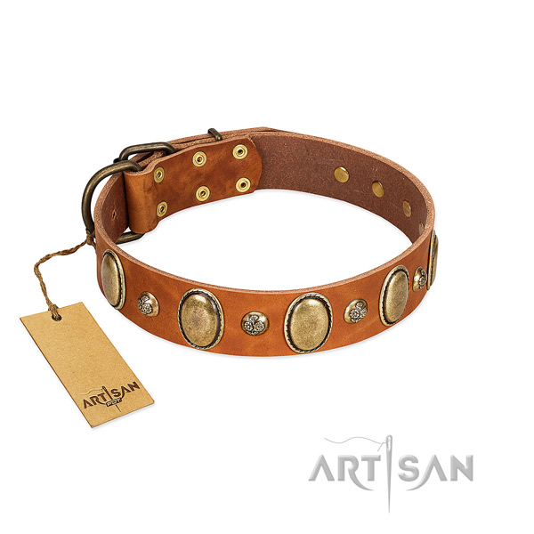 Leather dog collar of soft material with trendy adornments