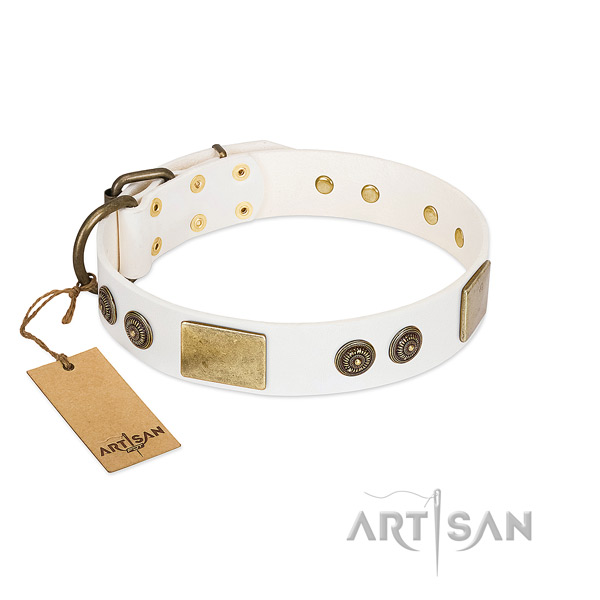 Fashionable genuine leather dog collar for handy use