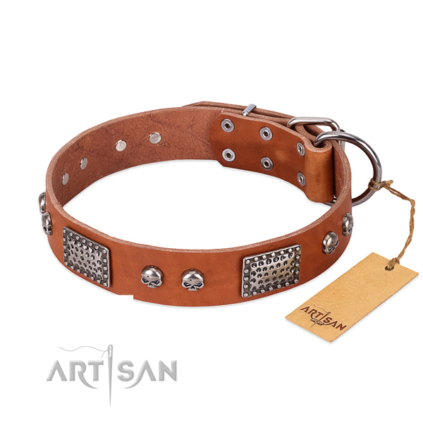 Easy wearing natural genuine leather dog collar for walking your four-legged friend