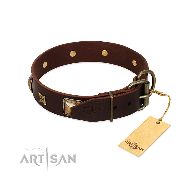 Leather dog collar with corrosion proof D-ring and adornments
