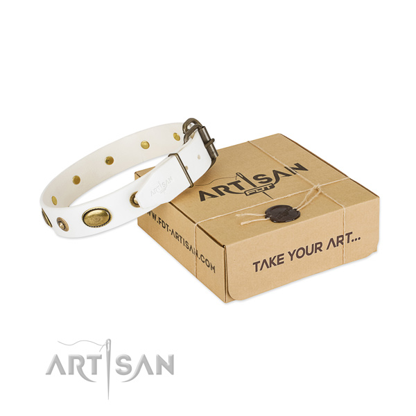 Top notch full grain genuine leather collar for your stylish four-legged friend