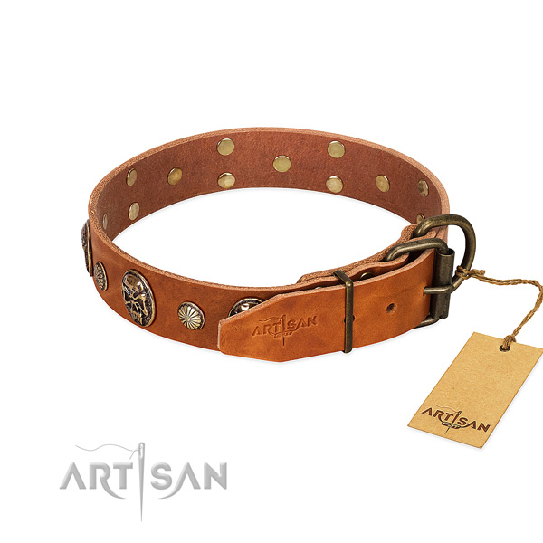 Reliable D-ring on natural genuine leather collar for basic training your four-legged friend