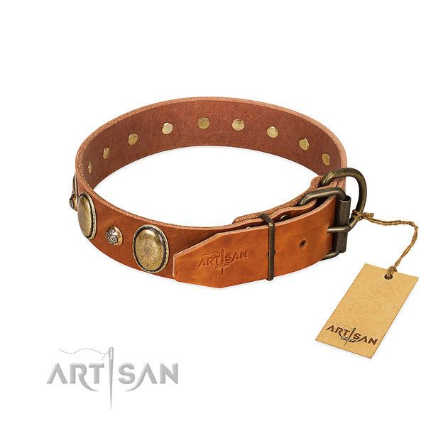 Reliable fittings on leather collar for everyday walking your dog