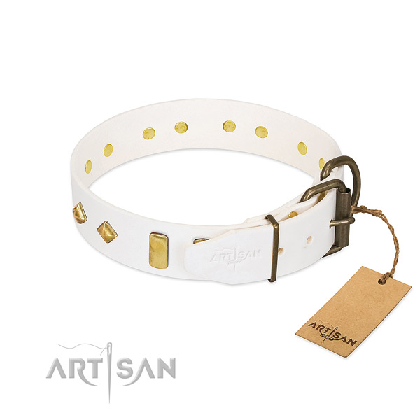 Top notch full grain leather dog collar with strong traditional buckle
