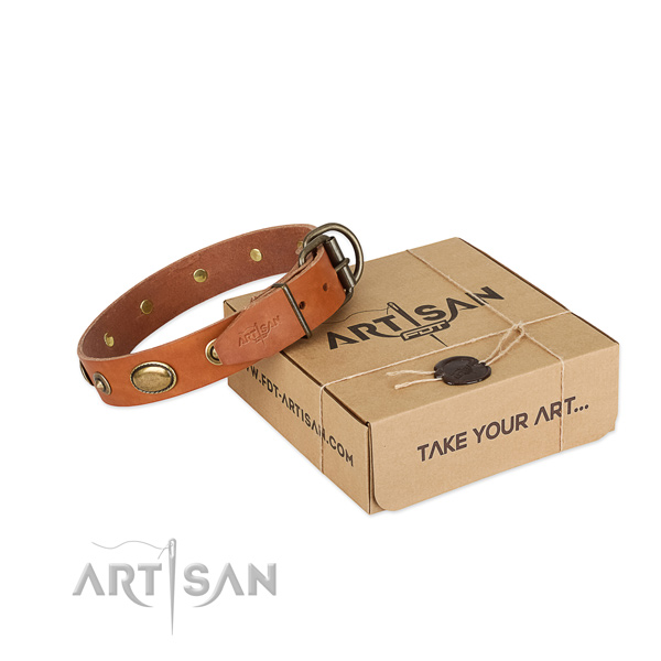 Strong traditional buckle on full grain genuine leather dog collar for your four-legged friend